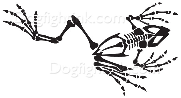 Navy Seal Frog Skeleton Tattoo