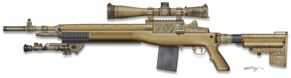 M14 stock options